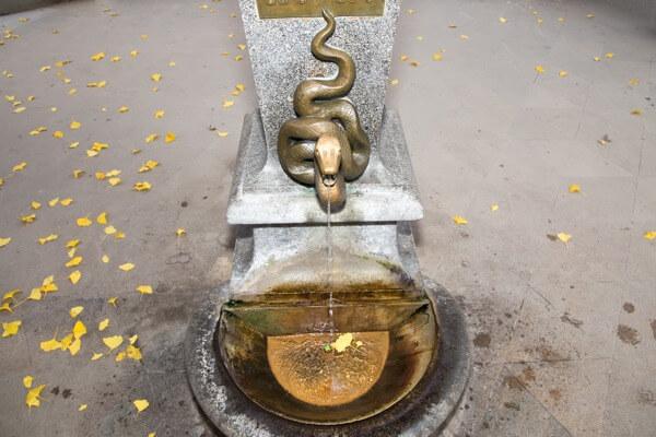 Hadí pramen